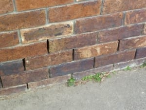 Damage to brick wall from salts in soil