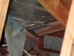 Roofs leaking causing damage