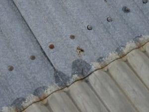 Galvanising & zinc corrosion