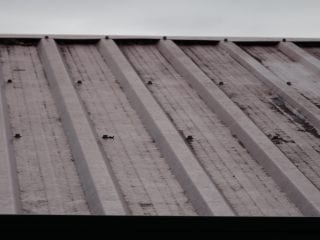 Roof sheeting improper securing-Jamboree Heights