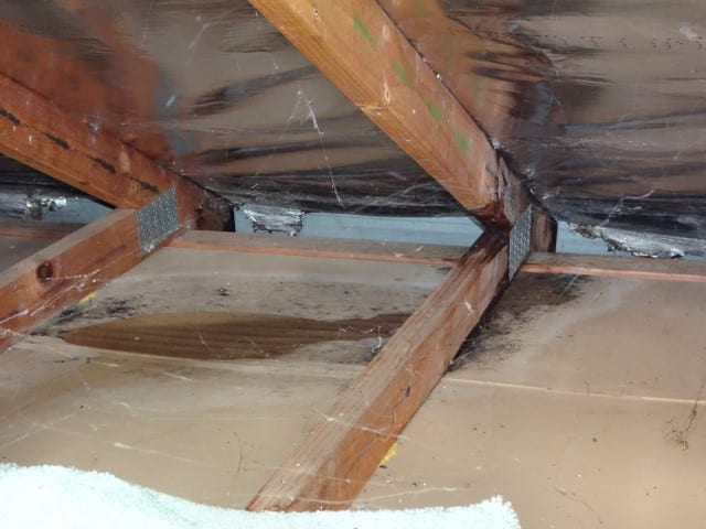 Leaking roof causing damage